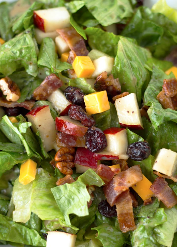 Up-close serving of Autumn Chopped salad with dressing.
