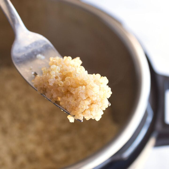Square image of fluffed quinoa on fork.