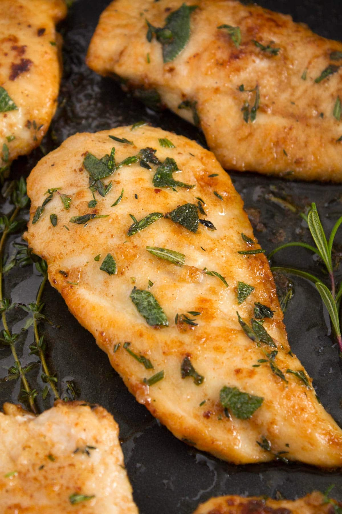 Pan seared chicken breasts in an elcetric skillet with a brown butter herb sauce.